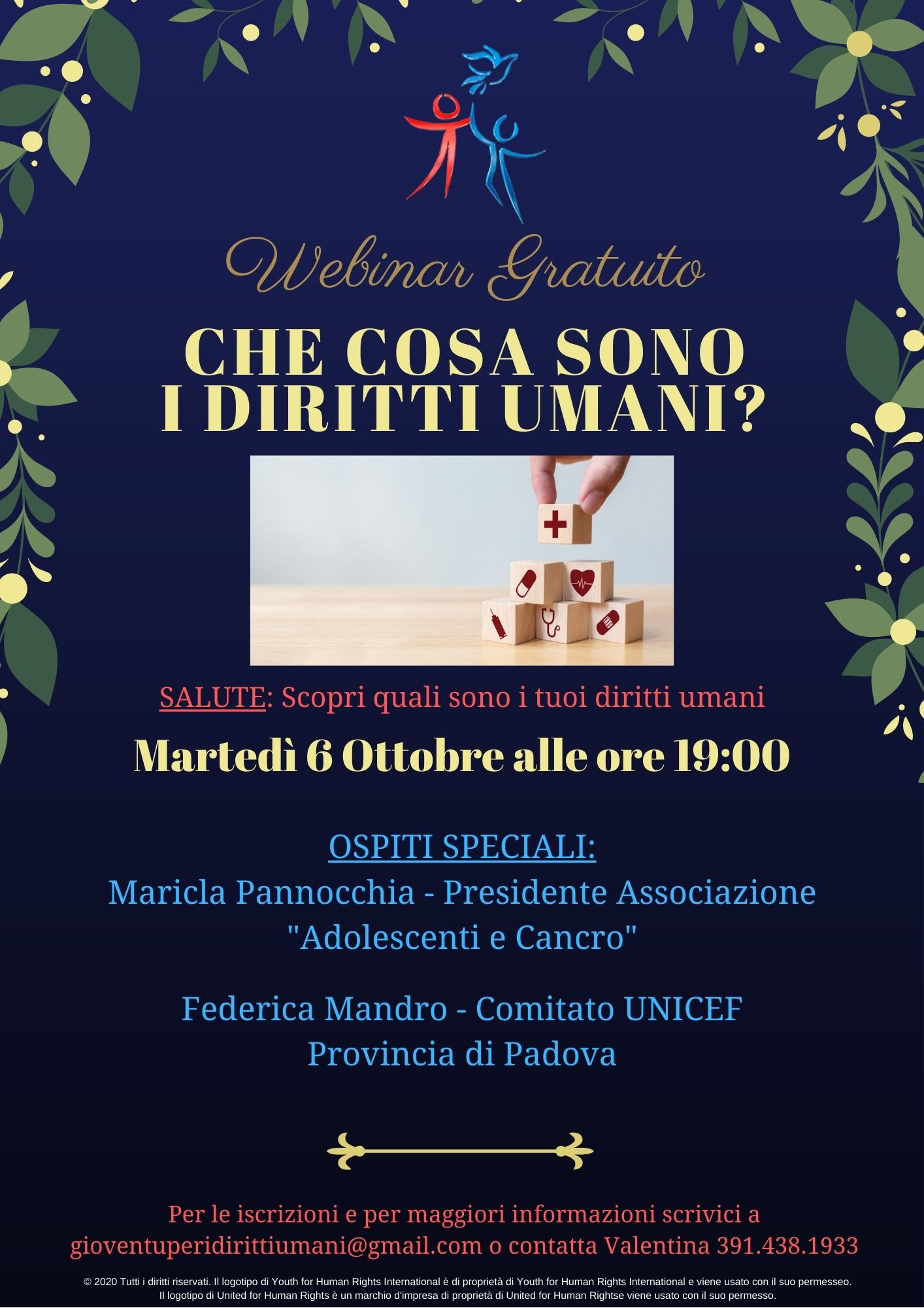 Salute Webinar Sui Diritti Umani Article Marketing Italiano